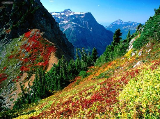 North_Cascades_in_Autumn_Mount_Baker_Washington